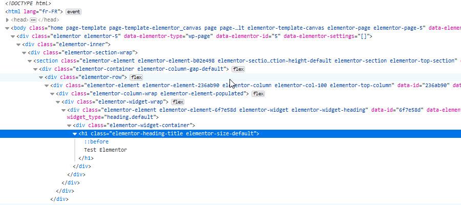 wordpres code elementor