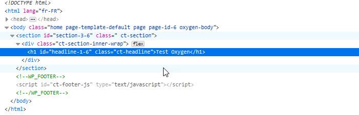 wordpres code Oxygen Builder